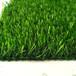 平頂山人造草坪生產廠家