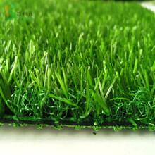 墙壁安装塑料草坪图片
