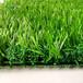 高尔夫人工草坪