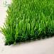 鶴壁人造草坪生產廠家