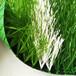 塑料草坪做法