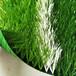 滁州人造草坪生產廠家