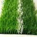 透水人造草坪