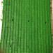 廣州人造草坪生產廠家