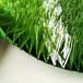 人造草坪tpe顆粒