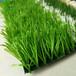 平臺鋪假草坪