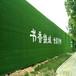 鶴壁工地圍擋人造草坪