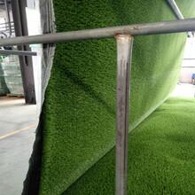 鶴崗人工草坪生產廠家圖片