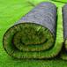 電白縣人造草坪綠色環保生產廠家