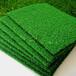 长乐人造草坪绿色环保生产厂家