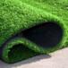 滁州幼稚園塑膠地坪人造草坪