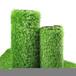 鳳城人造草坪綠色環保生產廠家