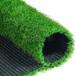 平頂山單絲加筋人造草坪