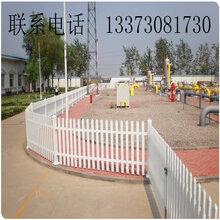 本厂专业生产pvc草坪护栏pvc小区护栏pvc塑钢护栏pvc美式护栏图片