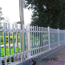 现货PVC护栏厂家、pvc塑钢围墙护栏、pvc塑钢草坪围栏图片