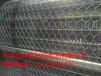 绿格网绿滨垫生态格网网垫蜂巢格宾塞克格宾合金网兜