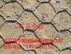 石笼网格宾网,铅丝石笼网,格宾石笼,雷诺护垫
