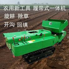 廠家直銷果樹施肥機履帶開溝鋤草機型號多功能田園管理機圖片