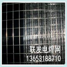 PVC包塑電焊網電焊網片綠化防護網耐腐蝕網片
