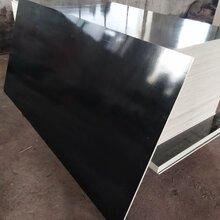 德州工程用四八尺建筑模板工程專用德州星冠圖片