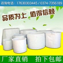河南博一化纖植樹袋美植袋種植袋美樹袋花盆容器廠家直銷環保移植袋
