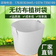 河南博一化纖植樹袋美植袋廠家無紡布加厚花盆容器種植袋育苗袋營養袋