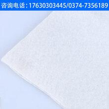 来宾土工布供应商图片
