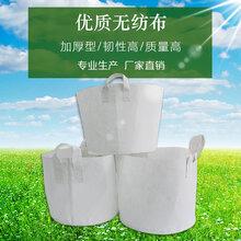 綿陽無紡布育苗袋廠家圖片