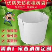 陝西省漢中市無紡布育苗袋河南廠家、物流方便-博一化纖