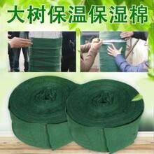 北京裹树布河南厂家、物流方便-博一化纤图片