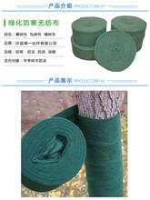 南宁包树布优质厂家、漂亮美观找博一-博一化纤图片