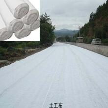 金华土工布优质厂家、漂亮美观找博一-博一化纤图片