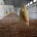 茅台镇酱香型白酒纯粮坤沙向全国出售怀庄各种年份散酒