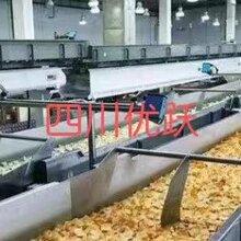出国打工瑞典食品厂急招普技工,货运司机年薪30万以上
