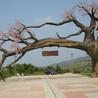 假山假树制作方法
