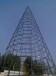 圣誕樹廠家批量出售圣誕樹