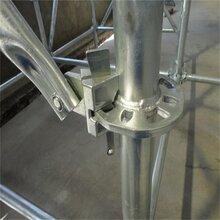 厂家批发脚手架承插式盘扣式脚手架现货供应量大从优图片