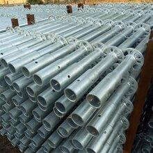廠家現貨供應盤扣式鋼管支撐架橋梁支撐架圖片