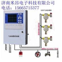 氮气泄漏报警器-实时监测-采用进口电化学气体传感器
