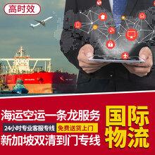 东莞服装到新加坡海运到门多少天可以到-新加坡空运