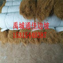 德阳河道护坡环保草毯生态植草毯植被毯抗冲生物毯图片