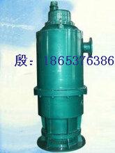 BQS(W)系列矿用160KW隔型潜水泵