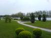 沧州人造草坪每平方米价格