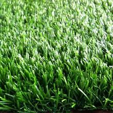 聊城区足球场人造草坪价格图片
