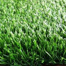 仿真人造草坪价格图片