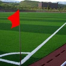 人造草坪足球场规格大全图片