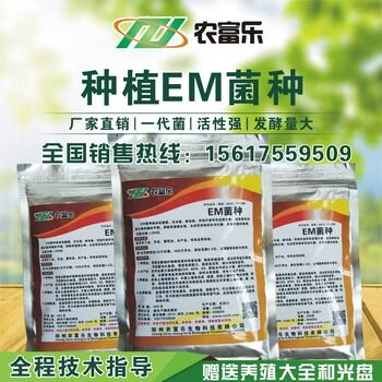 利用花生麸做果树肥料用什么牌子的菌肥发酵剂好