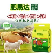 牛吃什么长得快育肥牛饲养方法肥易达效果怎么样