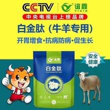 育肥牛饲养方法牛吃什么上膘快牛羊专用白金肽