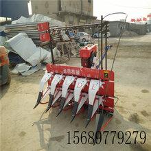 富錦市自走式玉米割曬機小型割曬機割曬機配件割曬機參數升級產品圖片